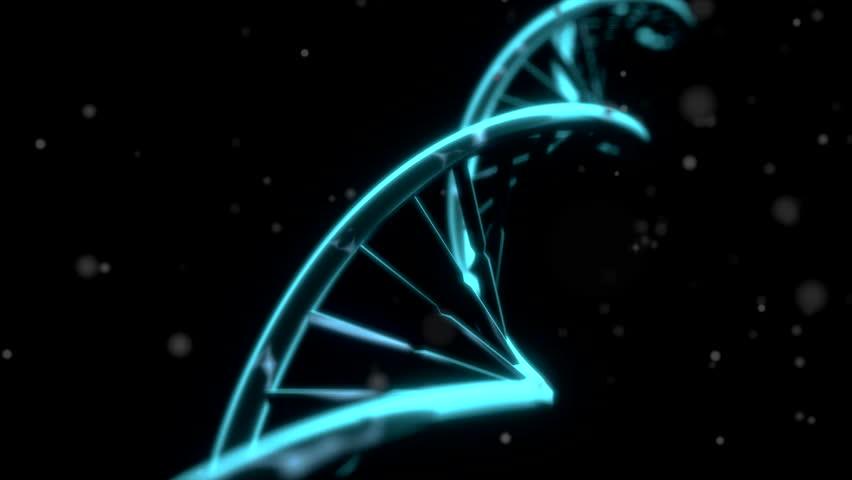 Asiantuntijan DNA verkossa